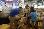 Governor Markell talks agriculture and tradition at the Delaware State Fair