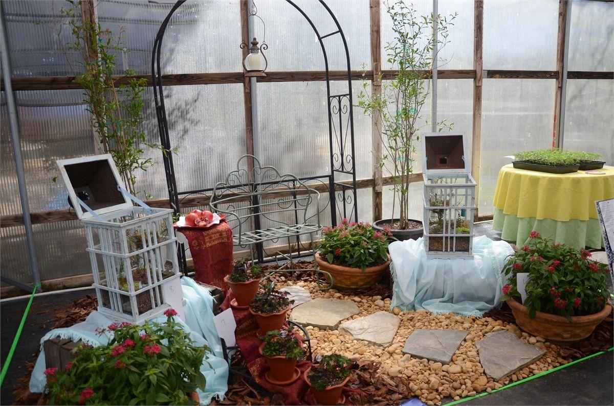 Plants for Ix center home and garden show 2017