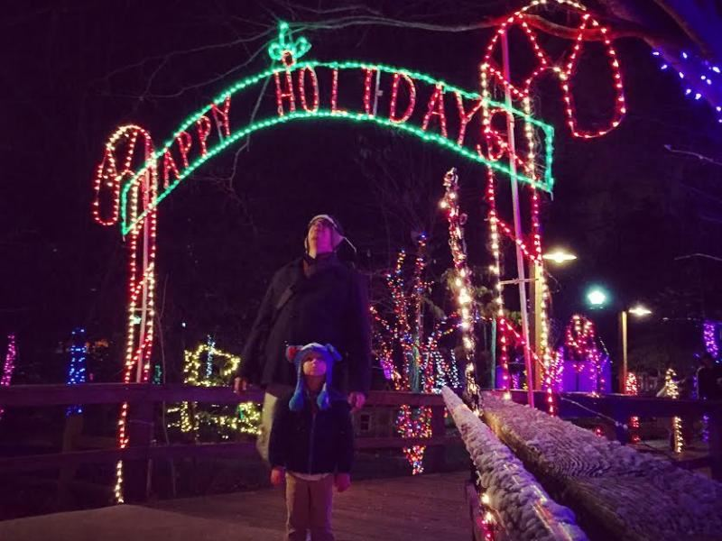 riverbanks zoo lights before christmas 2017 - Riverbanks Zoo Lights Before Christmas
